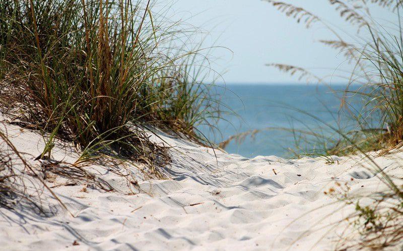 Splendid beaches